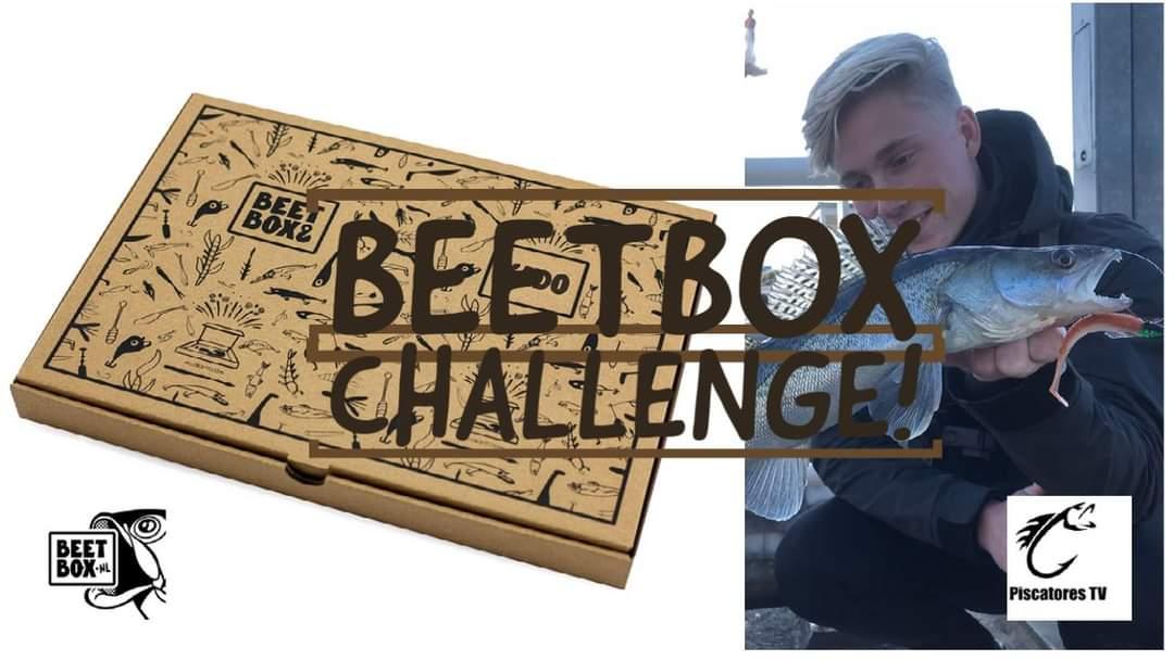Beetbox Challenge Video